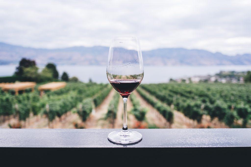 10 Mitos e Verdades Sobre os Vinhos