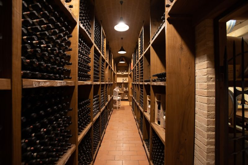 Vinificação e o Processo de Produção do Vinho